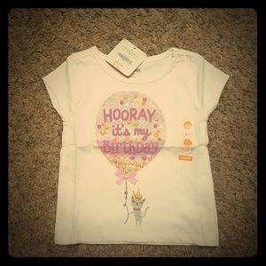 Gymboree toddler girl birthday shirt